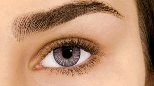 Gray-contacts